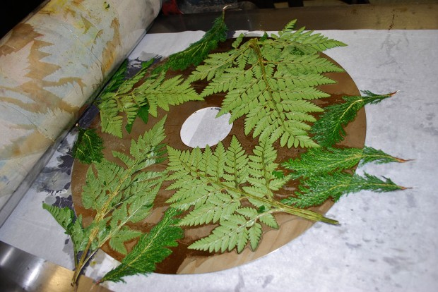 Pressing leaves into soft-ground on the zinc plate